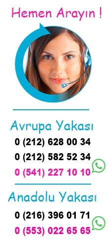 Miss İlaçlama İletişim